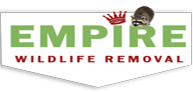 Wildlife Control, Wildlife Removal and pest control Durham Region, Animal Removal York Region, Pest Removal Services, Wildlife Animal Removal, Wildlife and Pest Control, Racoon Removal